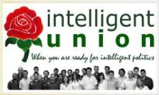 Intelligent Union Logo